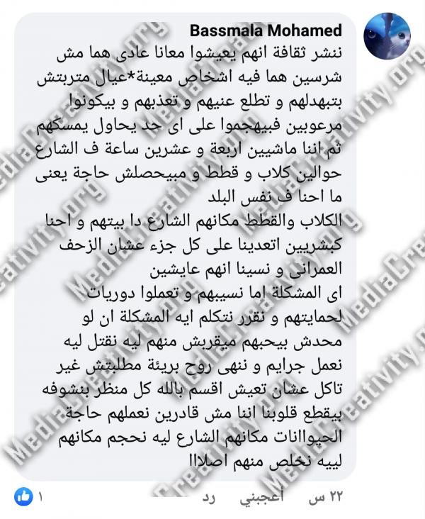 العنف ضد الحيوان فى بورسعيد